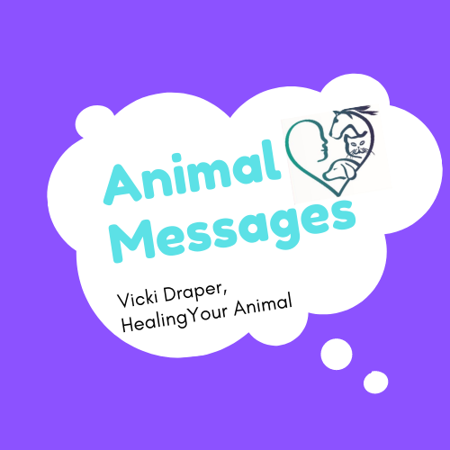 Animal Messages Podcast