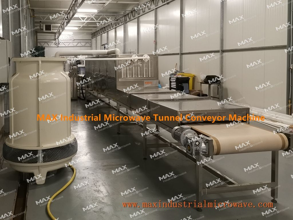 Conveyor Tunnel Microwave Machine