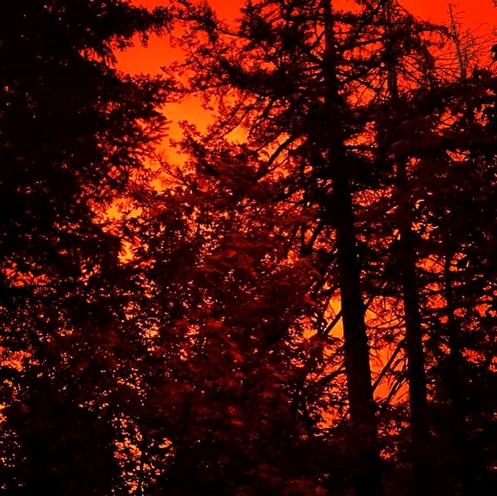 Oregon Fire Above The Trees